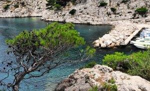 Paraíso de água transparente e extremamente gelada. // Le paradis: une eau transparente mais extrêmement froide.